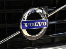 Volvo научит автомобили австралийцев избегать ДТП  с кенгуру
